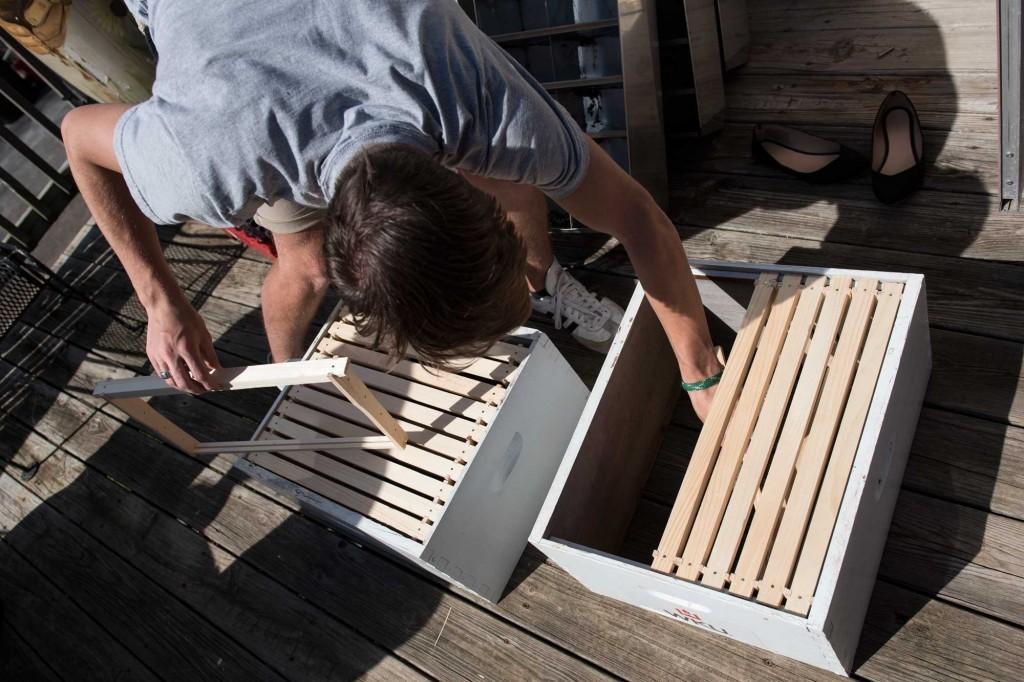 beekeeping-9