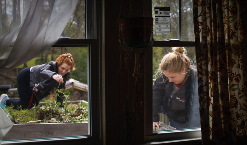 """Megan Laffoon, a Louisville senior, works on the rooftop garden at the Office of Sustainability. She attended meetings at the office and worked on garden projects weekly. """"When I was younger, I remember making fairy gardens in my yard,"""" Laffoon said. """"I've always loved being outside and working with my hands."""""""